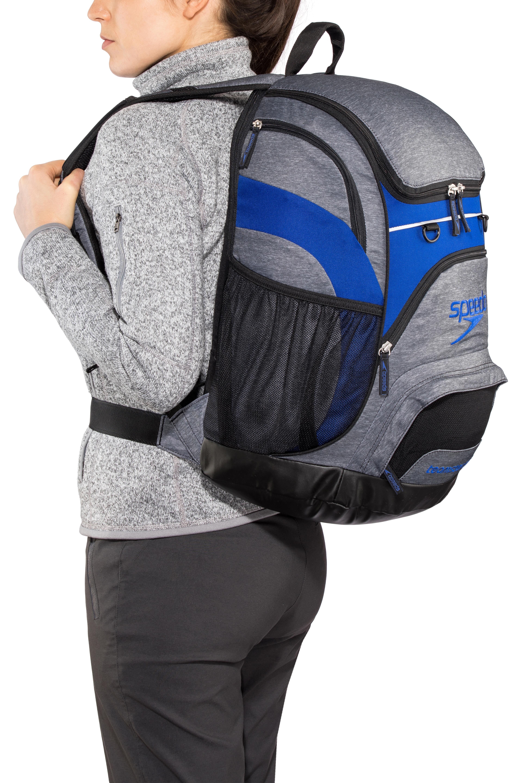 60db6b4ab56646 speedo Teamster Backpack L Unisex, grey/navy I Online op bikester.be